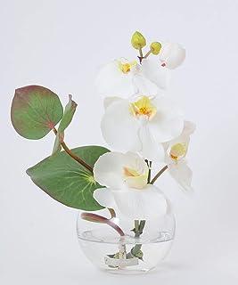 (エミリオロバ) EMILIO ROBBA TTITC30060 胡蝶蘭 ファレノプシス 白い花 花 アレンジメント アートフラワー ギフト お祝い