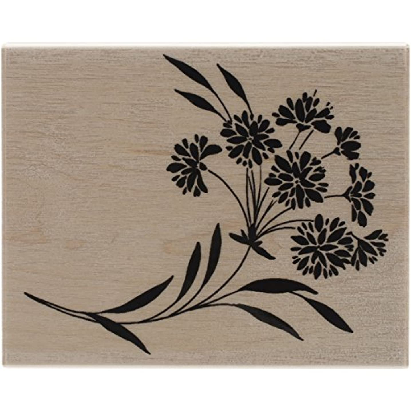 Penny Black 4403K Ebullient Wood Mounted Rubber Stamp