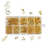 MURUI SS01 Kit de Accesorios de joyería Kit Piezas de Metal Anillo/Cierre de Langosta/Cadena/Pin Conjunto de joyería Fabricación de Bricolaje Pulsera Collar Pendiente YC0407 (Color : 20)