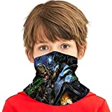 Alien Vs Predator Face Mask Bandanas,Neck Gaiter,Headwear,Magic Scarf,Headband for Dust Sun Wind,Reusable Bandana Face Cover,Anime Face Mask Balaclava Protection from Dust Black