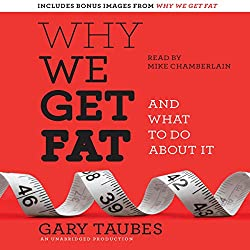 Cover and link to Why We Get Fat audio version