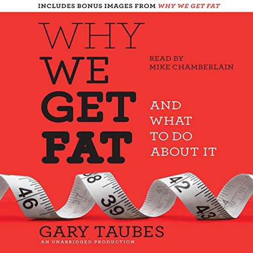 Why We Get Fat audiobook cover art