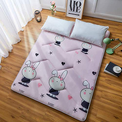 ZH Boden Tatami-Matte, Schlafmatratzenauflage Pad Folding Dicker, Futon-Matratze Kissen, Studentenwohnheim Schlafmatte (Color : D, Size : 0.9m Bed)