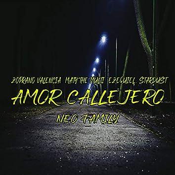 Amor Callejero (feat. Zoprano Valencia, Maty the Multi, Ezequiel, Stardust)