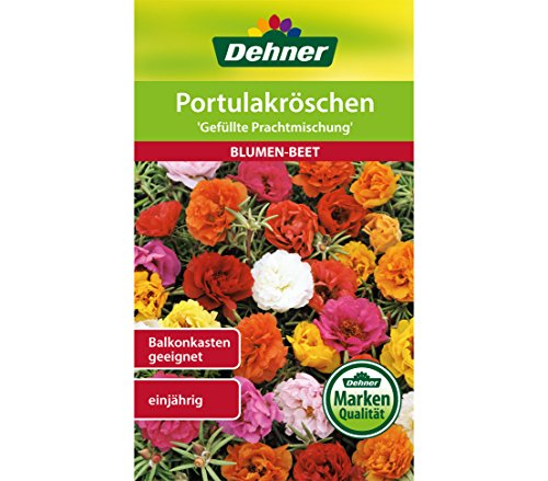 Dehner Blumen-Saatgut, Portulakröschen,