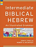 Intermediate Biblical Hebrew: An Illustrated Grammar (Learning Biblical Hebrew)