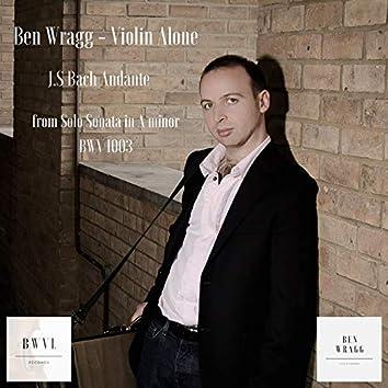 Solo Sonata in A Minor, BWV 1003: III. Andante