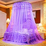 Yenisai Moskitonetz Doppelbett Einzelbett inkl Montagematerial Groß Mückennetz, Spitze Elegant für Schlafzimmer, Camping oder geben Sie es an Freunde und Familie-Lila