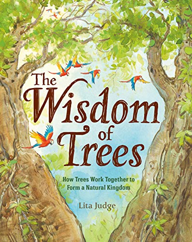 Compare Textbook Prices for The Wisdom of Trees: How Trees Work Together to Form a Natural Kingdom Illustrated Edition ISBN 9781250237071 by Judge, Lita
