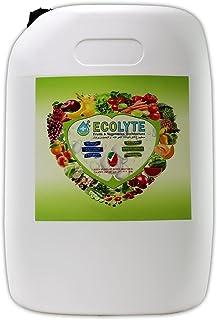 Ecolyte Fruits & Vegetables Disinfectant 100% Natural - 20 Litre