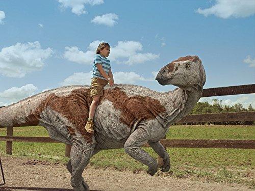 Dino-Reiter/Nachtaktiver-Dino