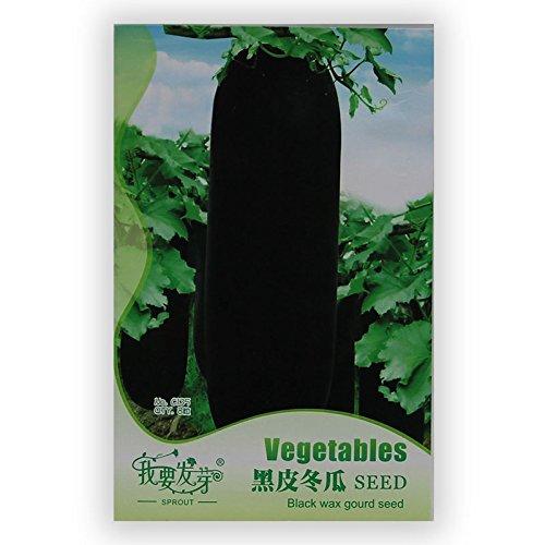 Heirloom jaune poivron doux Semences Potagères, emballage d'origine, 100 graines / Pack, Organic Big Peppers