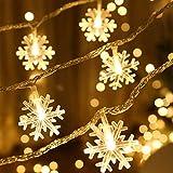 AUOFAN イルミネーションライト 雪型LED フェアリーライト 6M 40LED 電池式 LEDストリングライト ハロウィーンライト クリスマスライト 点滅ライト 防水 クリスマスツリー飾り クリスマス ハロウィン パーティー 正月 誕生日 祝日 結婚式 学園祭屋外 庭 広場 家装飾ライト、ホテル、バー 室外室内 - ウォームホワイト