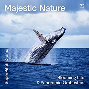 Majestic Nature (Blooming Life & Panoramic Orchestras)