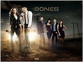 Bones David Boreanaz, Emily Deschanel and Cast by Power Lines in Desert 8 x 10 inch photo