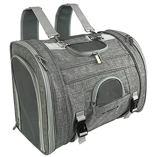 Mr. Peanuts Monterey Series Convertible Backpack