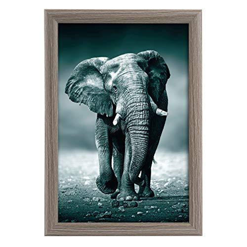 goldbuch Cadre photo Toscana en bois pour photo au format 20 x 30 cm, cadre photo avec support et support mural, cadre unique en MDF, cadre photo gris