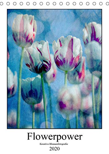 Flowerpower - Kreative Blumenfotografie (Tischkalender 2020 DIN A5 hoch): Positive Lebensgefühle weckt diese fotografische Sammlung und sie ist ein ... (Monatskalender, 14 Seiten ) (CALVENDO Natur)
