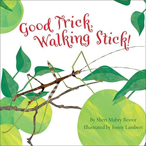 Couverture de Good Trick Walking Stick