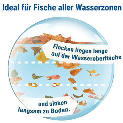TetraMin (Hauptfutter für alle Zierfische in Flockenform, für ein langes und gesundes Fischleben und klares Wasser, plus Präbiotika für verbesserte Körperfunktionen und Futterverwertung), 10 Liter Eimer - 5