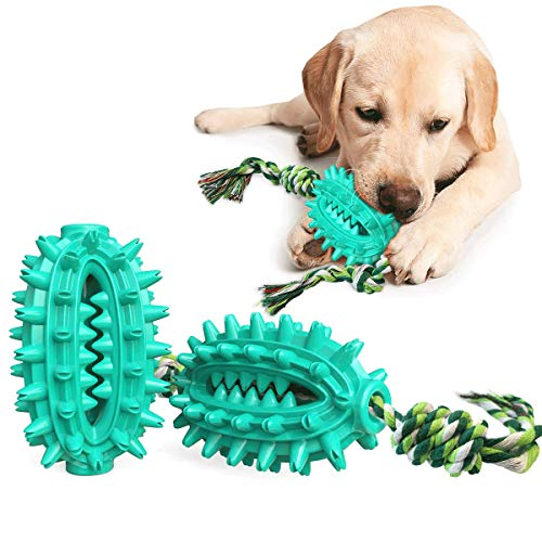 Hundezahnbürste Kauspielzeug, unzerstörbares Hundespielzeug, Molar Spielzeug, Hundezahnpflege Reinigen Spielzeug Bürsten, Ball Leckerli-Spender für Hunde, Naturkautschuk Hunde Zahnbürsten Bälle