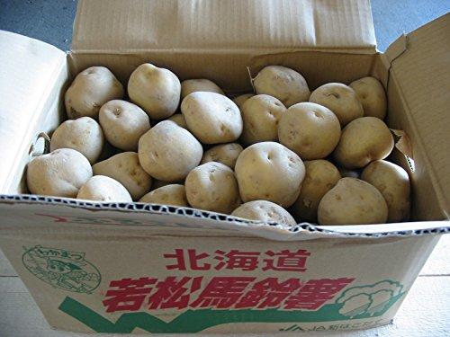 北海道産 「男爵」もしくは「とうや」 Lサイズ 10kg詰め じゃがいも ジャガイモ