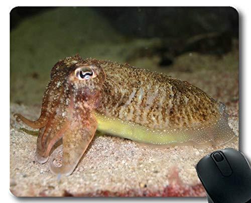 Individuelles Mauspad, Aquarium-Thema von Persönlichkeit Gaming Mouse Pads