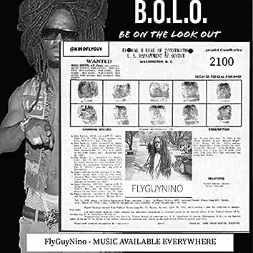 BOLO 2