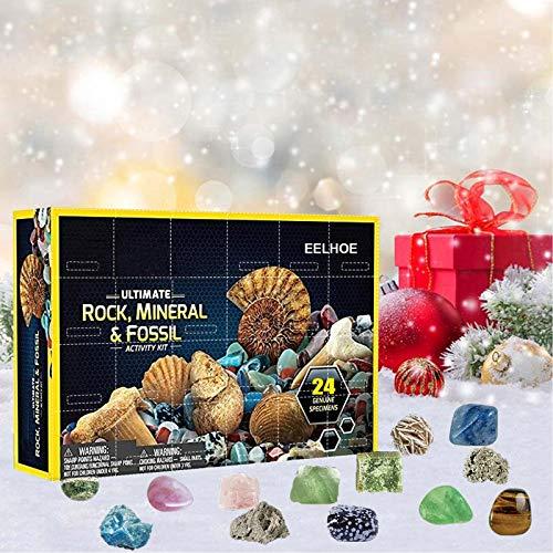 Hirolan National Geographic Rock Adventskalender Rocks Aufbewahrungsgeschenkbox bietet Kindern Lernspielzeug Geeignete Geschenke für Kinder Active Kit (1PC,Adventskalender)