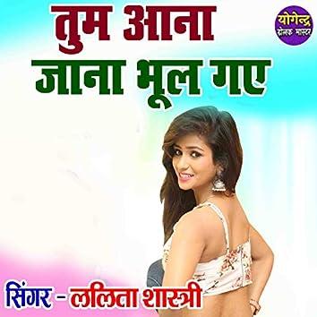 Tum Aana Jana Bhool Gaye