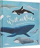 Die Welt der Wale: Lerne die Riesen der Ozeane kennen