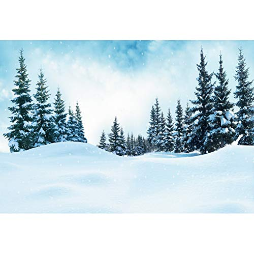 YongFoto 12x8ft Winter Scenery Backdrop Bright Light Glitter Pine Forest Snowy World Background for Photography Party Shoot Banner Portrait Photo Studio Props Wallpaper Decoration