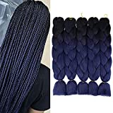 AIDUSA Ombre Braiding Hair Black to Navy Blue 5Pcs Synthetic Afro Braiding Hair Extensions 24 Inch 2 Tones for Women Twist Crochet Braids 100g (B20 Black to Navy Blue)
