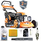 P1 Powered by Hyundai Petrol Lawnmowers Self Propelled Push Button Electric Start 21 Inch 51 Centimetre Cutting Width 173cc, Included 600ml Engine Oil Full Service Kit Replacement Blade P5100SPE