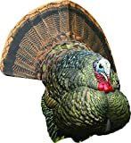 Best Turkey Decoys - Avian-X Strutter Decoy, Collapsible Realistic Turkey Decoy Review