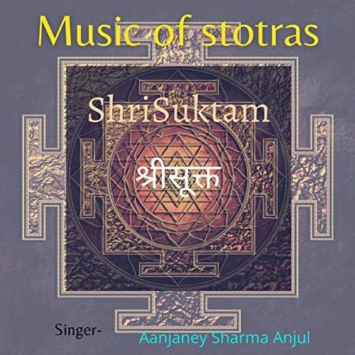 Aanjaney Sharma Anjul