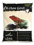 Rettili Planet Lettiera Calcio Sand Sechura Natural 2,5kg