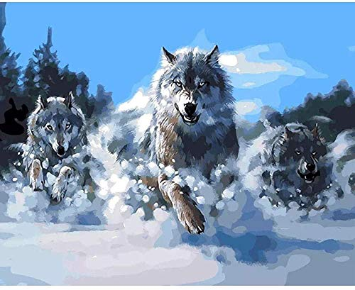 DIY 5d Diamond Painting Kits Snow Wolf Rhinestone Pasted Cross Stitch for Home Wall Decor Adults and Kids 16 x 12 in