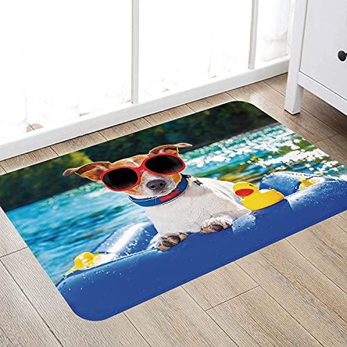 Alfombra de baño súper Suave de 50 x 80 cm,Gracioso, Perro Jack Russell con Gafas de Sol Sentado en la Playa del Lago Puppy at Beach Picture Alfombra de baño Absorbente Antideslizante