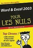 word excel 2003