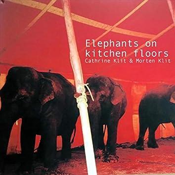 Elephants on Kitchen Floors