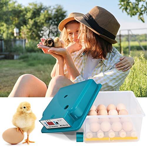 4YANG Incubadora de 16 huevos automática digital completamente automática Nacedora Pollo Aves De Corral Huevo Incubadora nacedora con control automático de temperatura,