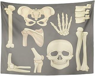 ShiHaiYunBai Väggmattor, Tapestry Wall hängande delar av human skelett skalle päls flickvänner hand humerus lubar 152 cm x...