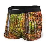 Dydan Tne Autumn-Grove-Leaf-Woodland Herren Boxershorts Cotton Sport Boxershorts