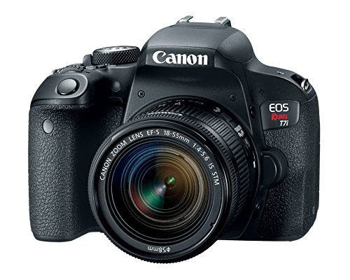 Canon EOS Rebel T7i EF-S 18-55 is STM Kit (Renewed)