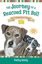 The Journey of a Rescued Pitbull: My Lil Superstar D'Angelo