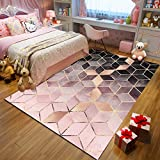 QWEASDZX Nordic Simple Tapis Salon Table Basse Couverture Chambre Chambre Couverture De Chevet Tapis Épais 160x230cm