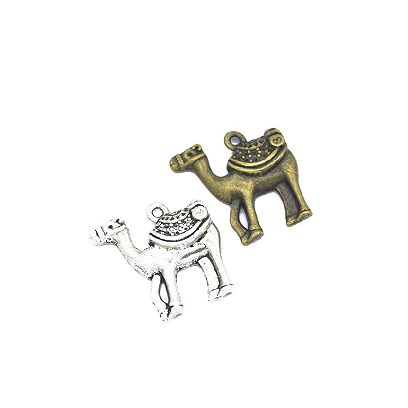 30pcs Alloy Charms Camel Pendants DIY Jewelry Findings and Components fit Necklaces and Bracelets Making 24x24mm (Camel Charm 30pcs)