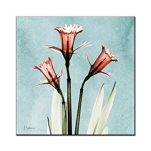 WSNDGWS Minimalista Moderno Pequeño Fresco Transparente Floral Abstracto Arte Sala de Estar Fondo Pared Pintura Decorativa Núcleo Sin Marco de Imagen C2 30x30cm