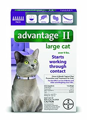 Bayer Animal Health 12 Month Advantage II Flea Control Large Cat (for Cats Over 9 lbs.)